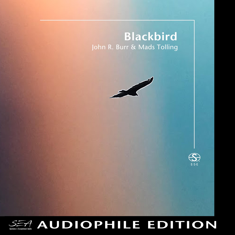 John R. Burr & Mads Tolling - Blackbird - Cover Image